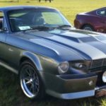 ELEANOR MUSTANG (FB200)